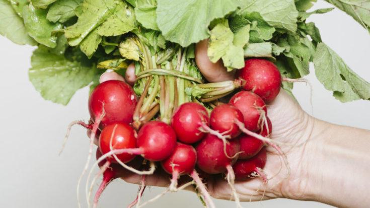 frutta e verdura di primavera